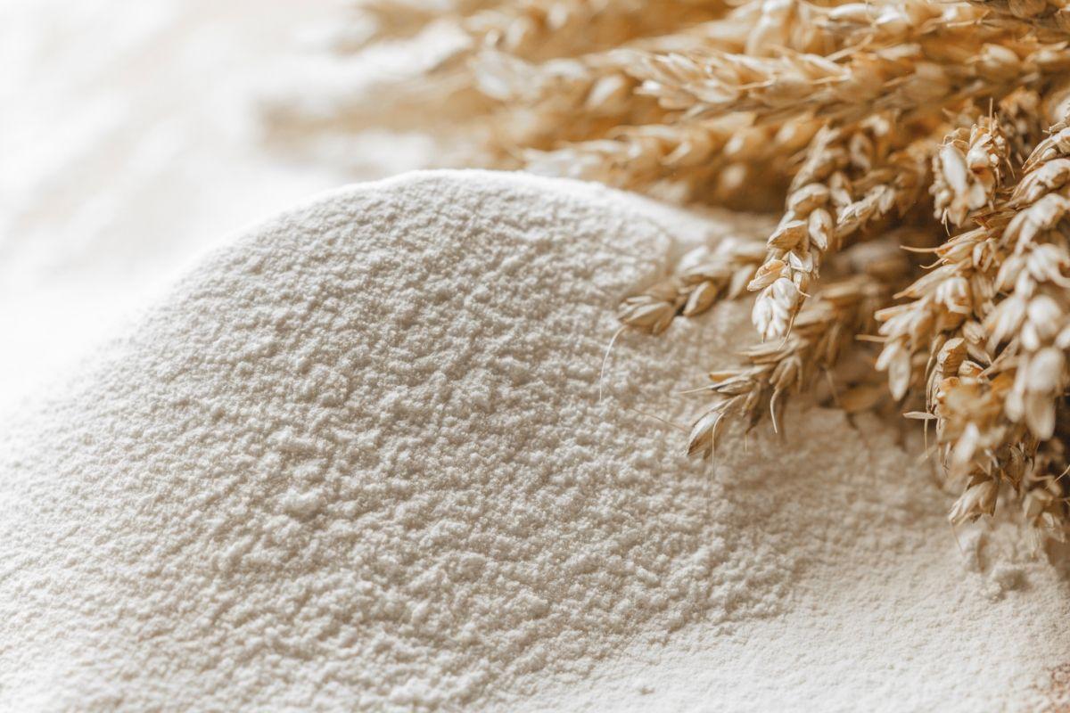 robot paletizador harina alimentación