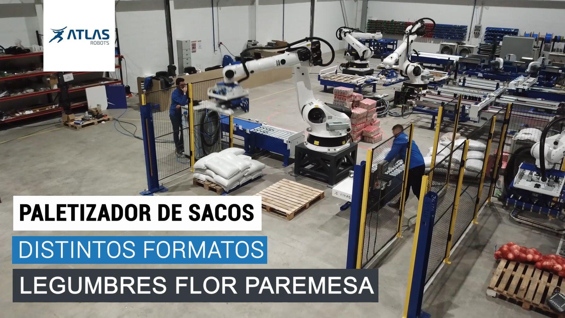 robot paletizador de sacos de legumbres – La Flor de Paramesa