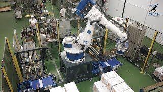 Robot Paletizador de cajas – Licores y Derivados