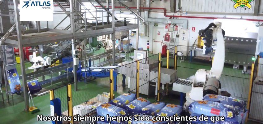 paletizador de sacos y cajas de frutos secos